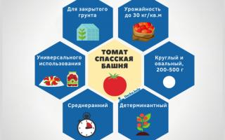 Спасская башня: описание сорта томата, характеристики помидоров, посев