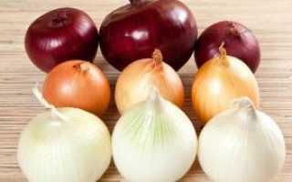 Лучшие сорта лука севка: список, описание, выращивание в открытом грунте