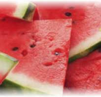 Все об арбузе: что за растение, ягода или фрукт, витамины, кому полезен