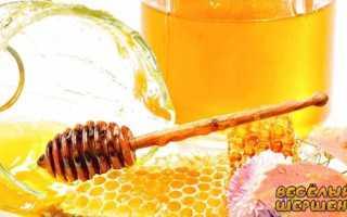 О сроке годности меда натурального при комнатной температуре в домашних условиях