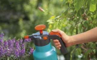 О ручном садовом опрыскивателе: рейтинг помповых распылителей для сада