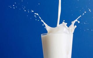 Что делать, если в коровьем молоке кровь, оно горчит или пропало вовсе (причины)