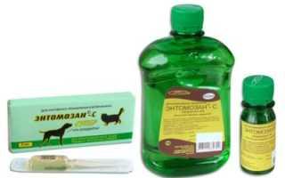 Энтомозан C: инструкция по применению для кур (как разводить)