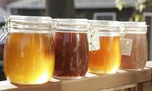 Почему мед густеет: что это значит, от чего зависит густота меда свежего урожая