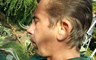 О методах борьбы с вредителями земляники (что делать, как избавиться)