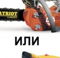 Битва титанов: бензопила или электропила. Что лучше? — 7ogorod.ru