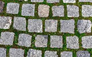 Способы борьбы с травой между тротуарной плиткой: методы, средства обработки