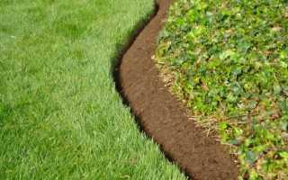 О бордюрной ленте для газона: пластиковый и металлический, способы установки