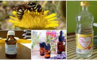 Какие запахи отпугивают ос, какой запах не любят осы, какого запаха боятся пчелы