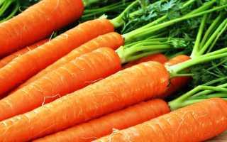 Как подготовить грядку под морковь весной, подготовка почвы, удобрение