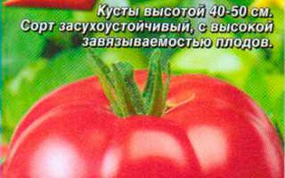 О томате Взрыв: описание и характеристики сорта, уход и выращивание
